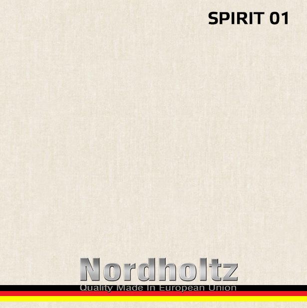 SPIRIT - photo №7