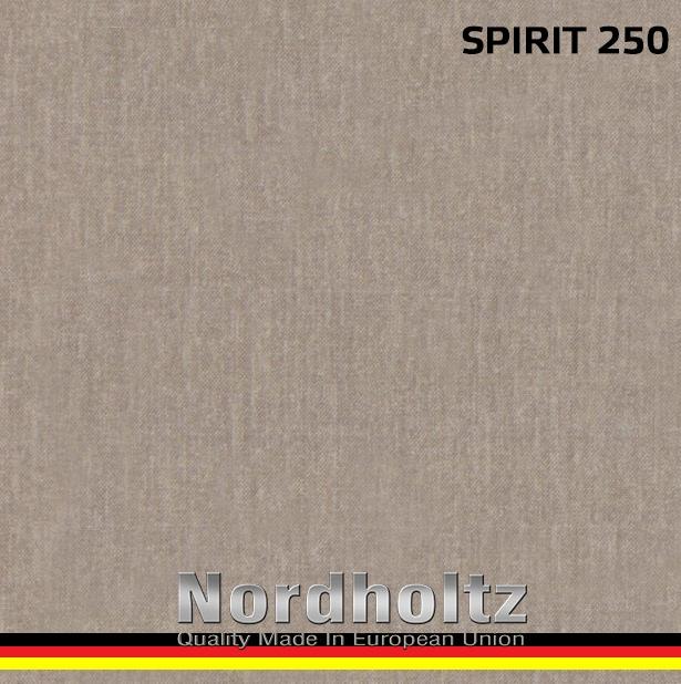 SPIRIT - photo №24