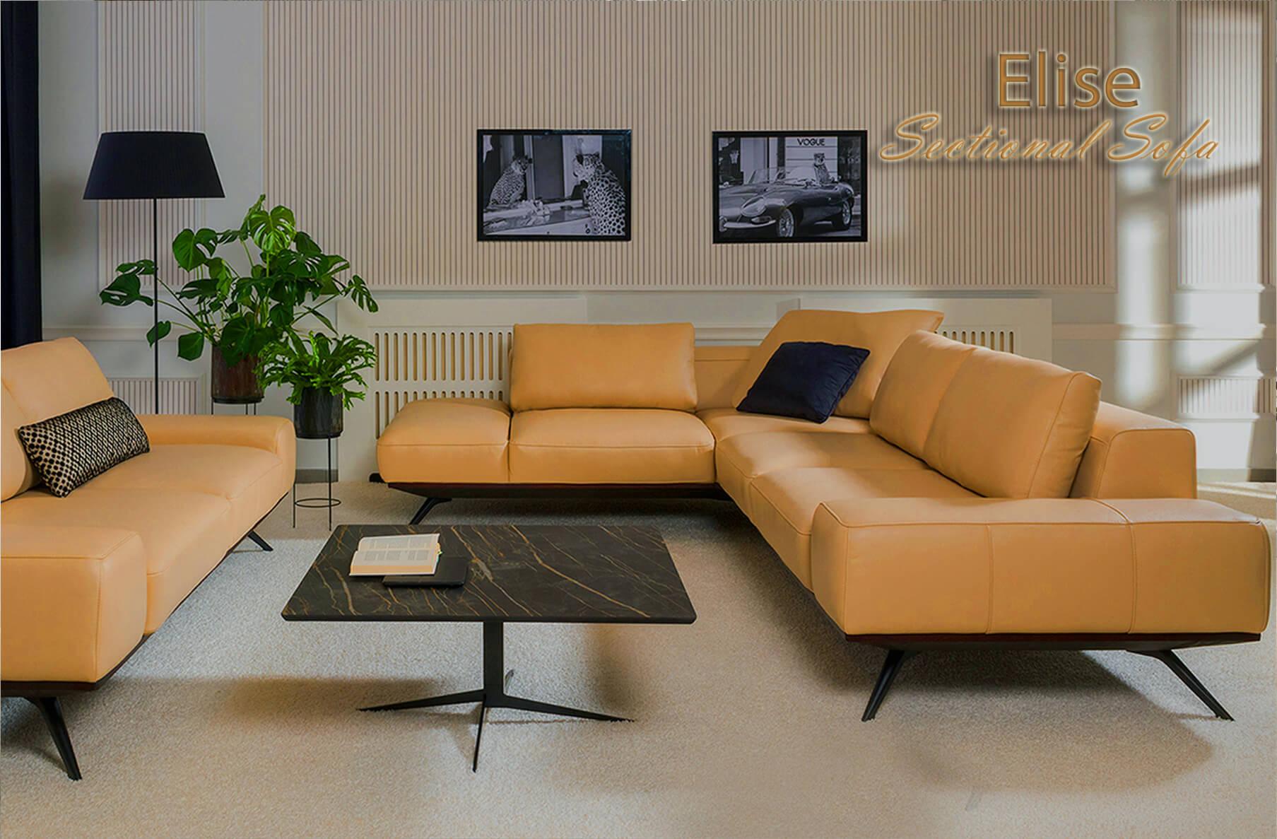 Elise sectional sofa, Cheap